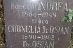11-Mormântul-în-care-trebuia-să-se-odihnească-osemintele-lui-Ioan-Ossian-Oarța-de-Jos